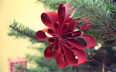 Guia de regalos sostenibles