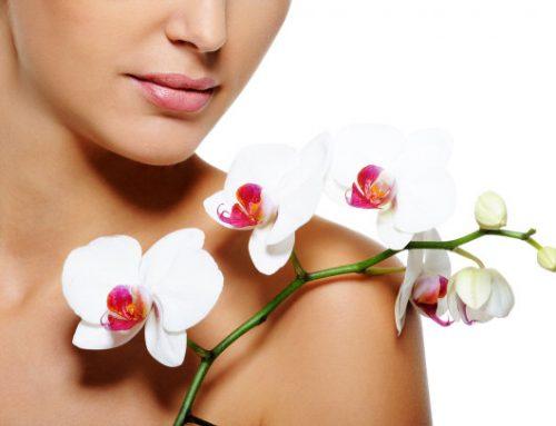 """""""La piel es el órgano más grande del cuerpo y absorbe sustancias nocivas a diario"""""""